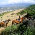 escursioni-cavallo_03